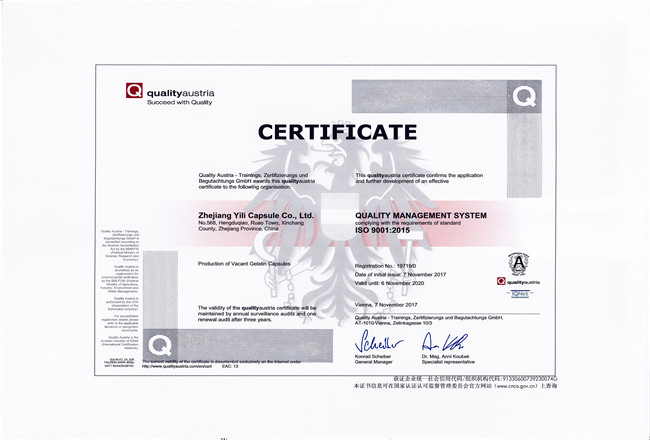 ISO 9001:2015 English certification certificate